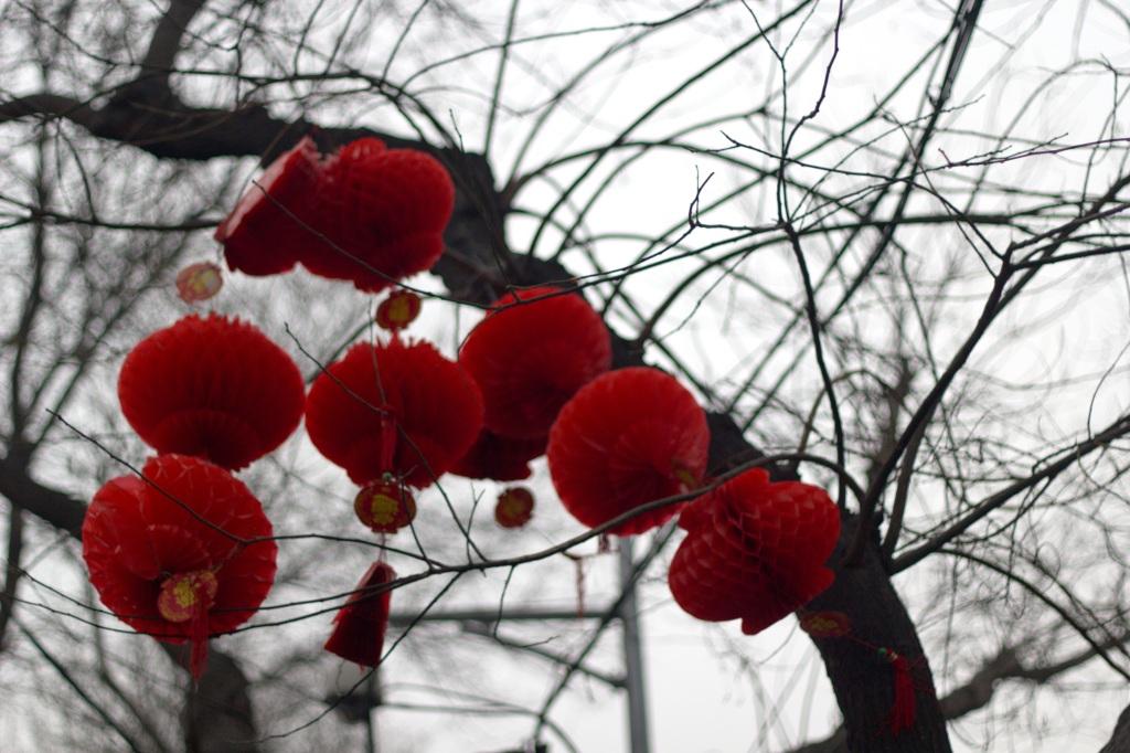 Beijing_Lanterns
